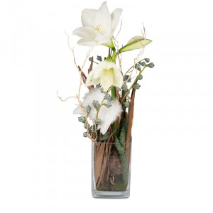 For my Angel (Amaryllis in vase)